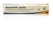 Banminth Pasta voor de kat